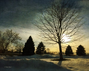 Landscape Photography, Winter, Sunset, Dreamy, Textured Style, Trees Silhouette, Blue, Yellow, Wall Art, Home Decor, Office Art, Bedroom Art