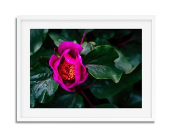 Digital download - photography of spring in Paris birthday - wall decor