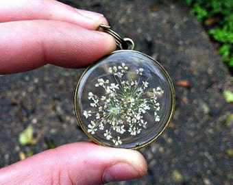 White Queen Anne's Lace Flower Preserved in Clear Casting Resin, Bronze Round Pendant, Bronze Chain Necklace