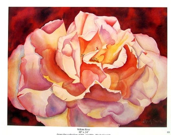 Flower Print - Yellow Rose - Botanical Print -1996 Naturalist Book Page - 12 x 9