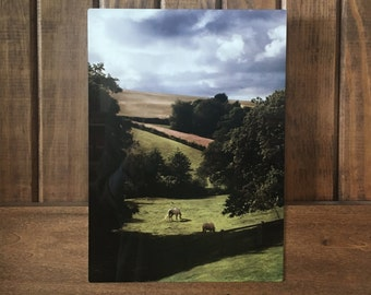 """Somerset, England---A photograph of the English countryside infused onto a 8x12"""" high-gloss metal plate"""