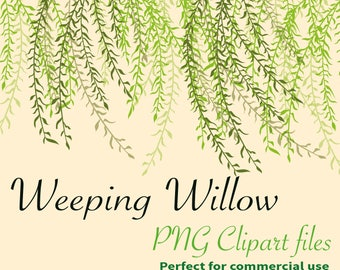 28 x PNG Coloured Gorgeous Weeping Willow Leaves Branches garden wedding party ClipartInstant Downloadable 300dpi large PNG background