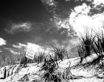 Fine Art Photography, Fine Art Print, Home Decor, Beach Decor, Nature Photography, Nature Wall Art, Beach Prints, Dunes