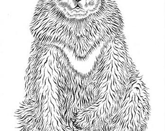 Moon bear card