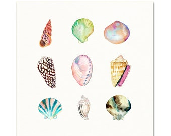 Sea Shell Collection Art Print. Watercolor Sea Shells Art. Beach Art. Shell Painting. Coastal Gallery Wall Art. Pastel Colored Sea Shell Art