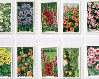 British Cigarette Card Set (Full Set of 48 Cards) - Garden Flowers. Issued In 1938 by Gallaher Cigarettes. Very Attractive Coloured Cards