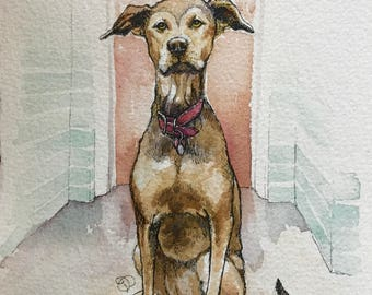 Commission a 5x7 Pet Portrait by Jamie Peterson. Ink and Watercolor Painting.