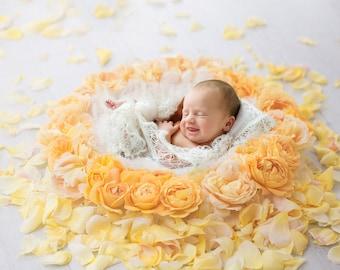 Newborn Photography Digital Backdrop for girls - Beautiful Yellow Rose nest, shot side on