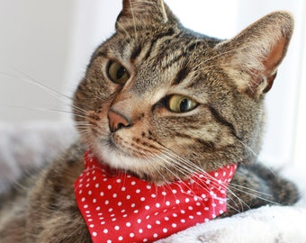 Bandana for Cats / Dogs/ reversible bandana Wales