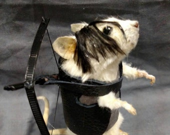 Daryl taxidermy Mouse