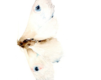 White Moth Fine Art Print from Original Watercolor Painting