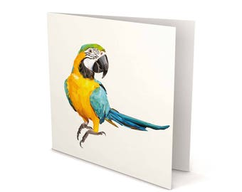 Macaw Greeting Card, Macaw card, Macaw, Macaw Parrot, Greeting Card, Square Card, Blank card