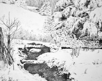 Winter landscape Winter Stream