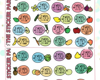 "Pregnancy Planner Stickers ""How Big Is My Baby?"" Planner Stickers"