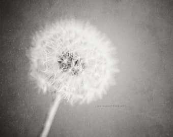 Minimalist Black and White Print or Canvas Art, Flower Picture, Black and White Dandelion Print, Modern Flower Print, Simple.