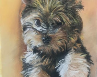Print of pastel portrait of Yorkshire Terrier