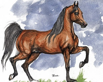 Bay arabian horse, equine art, horse portrait, equestrian,  original pen and watercolor  painting