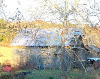 Golden Sunshine BARN  T3 Photograph Tennessee - Barn Photography