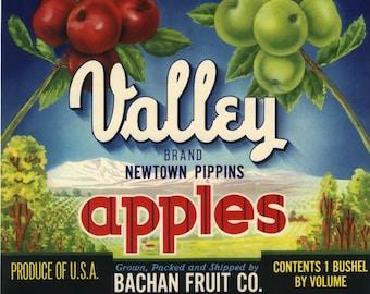 Original vintage apple crate label 1940s Valley Watsonville Landscape California