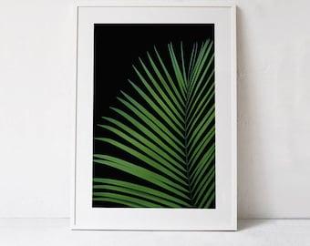 Large Botanical Print, Palm Leaf PRINTABLE Print, Nature Photography Print, Green Palm Leaf Print, Tropical Leaf Art Print DIGITAL DOWNLOAD
