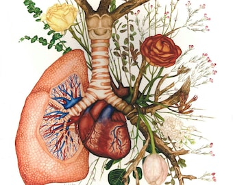Giclee Print- 'Branching'  Anatomical Watercolor Painting of Lung and Heart with Flowers
