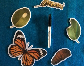 Butterfly life cycle song//felt board storie//nature //felt stories//science//flannel stories butterfly cycle//nature felt stories kinder