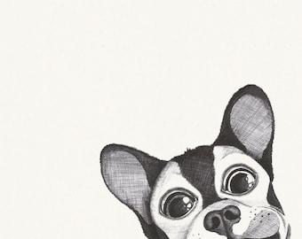 Poster illustration black and white Bulldog