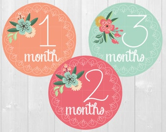 Baby Milestone Stickers, Floral Lace - Monthly Baby Stickers, Monthly Milestone, Baby Shower Gift, Baby Photos, Monthly Bodysuit Stickers