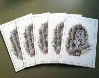 Northern Spotted Owl Blank Greetings Card  X 5 (A5)