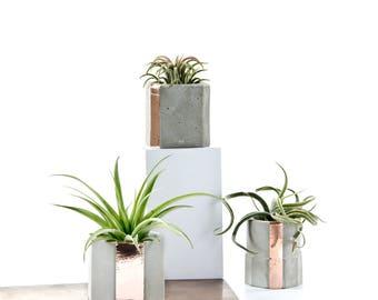 Shape Collection! Concrete Copper Cup Set of 3, Geometric Air Plant Holders, modern indoor garden decor, gift set, hand cast beton decor