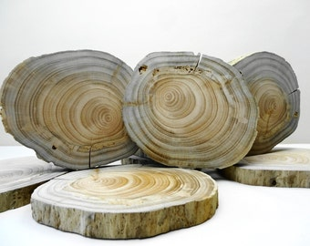 """5""""-6""""Tree Slices, Wood Slices, Woodworking, DIY, Crafts Wood, Wood Slice Table Riser, Wood Charger, Wedding Decor, Coasters, Wood Slabs, E18"""
