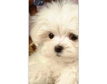 Apple iPhone Custom Case White Plastic Snap on - White Maltese Puppy Staring - Closeup 6157