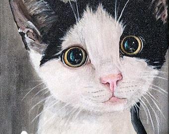 black & white kitten, cat painting, pet portrait, acrylic, canvas 8X10