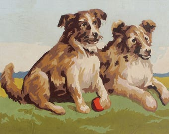Paint by Number Poster: Two Collies with Ball