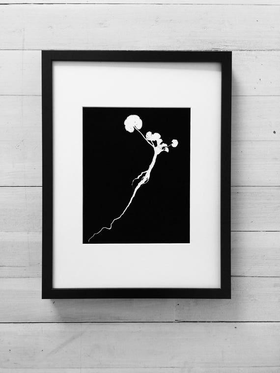 Botanical roots, Ground Ivy, Modern botanical, black botanicals, Christmas gift, Thanksgiving art, holiday art, art gifts, Christmas art