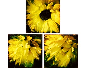Fine Art Print Set, Yellow Art Set, Sunflower Wall Art, Floral Photography Set, Dreamy, Surreal, Double Exposure, Set of 3 Art Prints