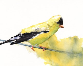 Bird PAINTING Goldfinch watercolor Print of Watercolor Painting G079- A4 print, goldfinch print of watercolor painting