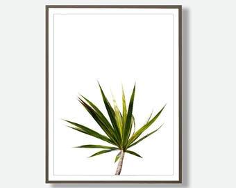 Tropical Leaf Art, Leaf Wall Art, Printable Large Poster, Tropical Prints, Printable Tropical, Modern Minimalist Art, Feliss-Art