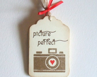 Picture Perfect, Camera Tags, Photography, Photographer, Wedding, Set of 6 or 12