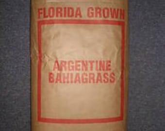 Argentine Bahia Pasture Grass