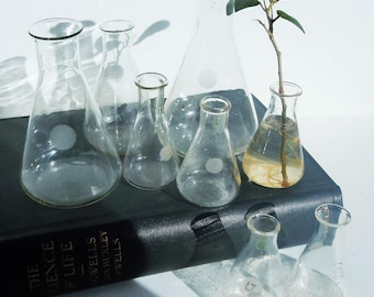 Science Glass / 8 Beakers  /3 Sizes / Pyrex Laboratory Glass / Great Scientific Decor and Style