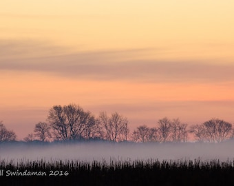 North Carolina Sunrise Light - Dawn at the Wildlife Refuge - Panorama and Rectangular Available