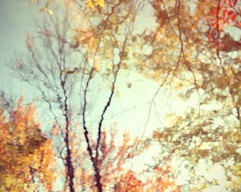 Nature Photography, Abstract Art, Fall Wall Decor,  Orange, Gold. Woodland Art, Rustic Decor, Tree Photo, Fall Foliage