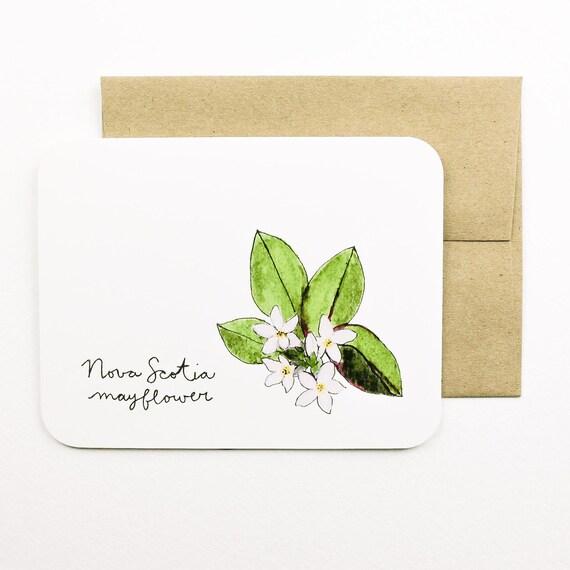 Nueva Escocia Mayflower Flores de la tarjeta con sobre las