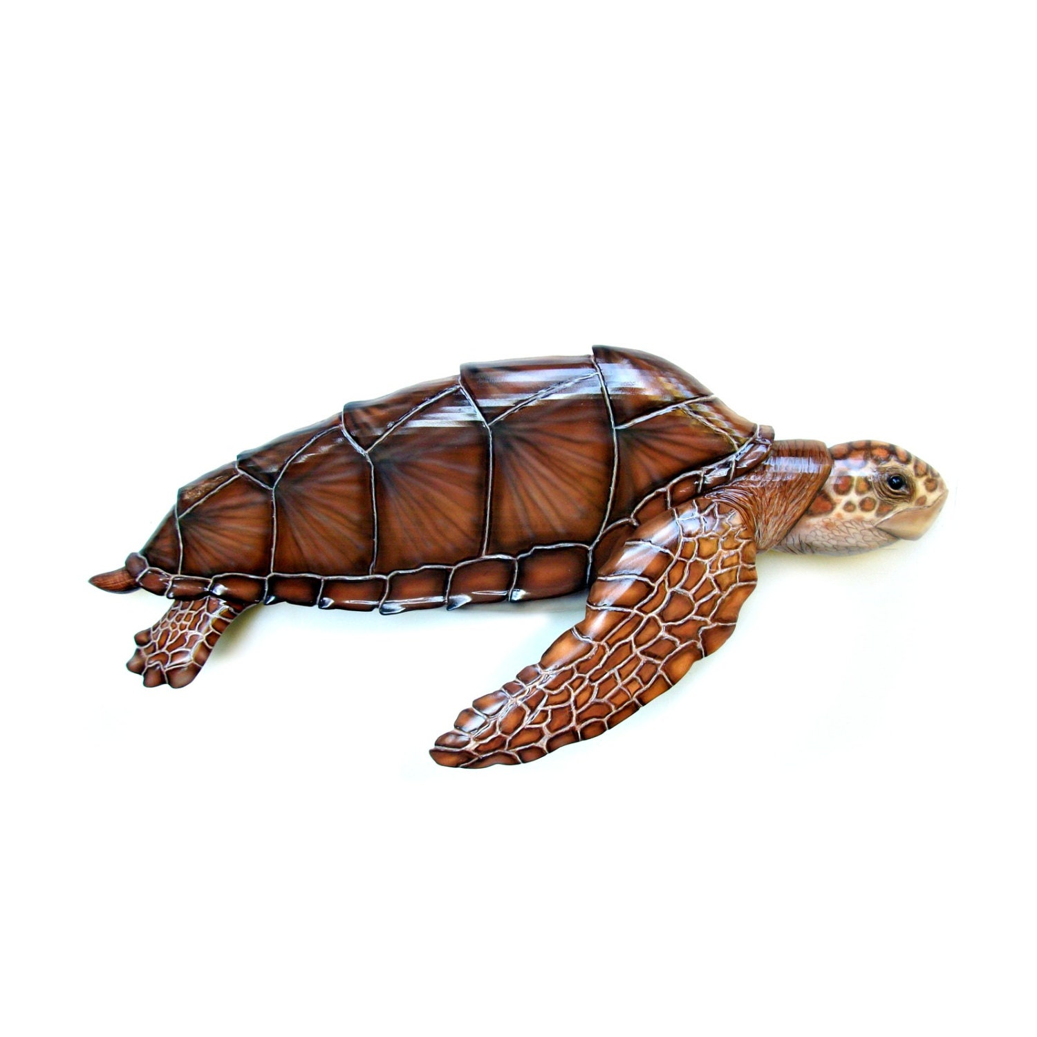 Loggerhead sea turtle  wood carving art