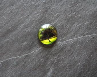 """Summer tree"" 20 mm cabochon glass"