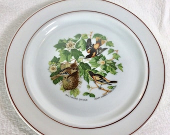 JWK Bavaria Western Germany Audubon Baltimore Oriole collectible plate.