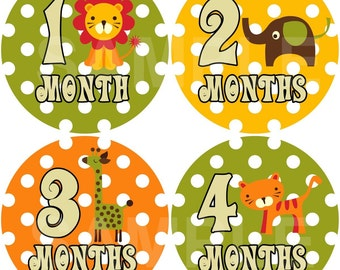 FREE GIFT Monthly Photo Stickers Baby Month Stickers Baby Boy Monthly Stickers Month Stickers Monthly Photo Sticker Milestone Stickers