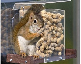 Pandora's Box Window Squirrel Feeder