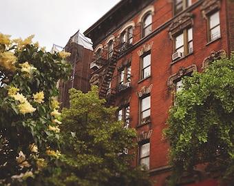 Floret -New York City art Print, New York Landscape Photography by Leigh Viner